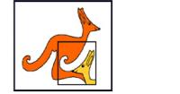 Kangur szansą na sukces matematyczny