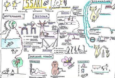 """Wyniki konkursu geograficzno-biologicznego """"Sketchnoting, czyli moja notatka wizualna"""" podsumowany"""