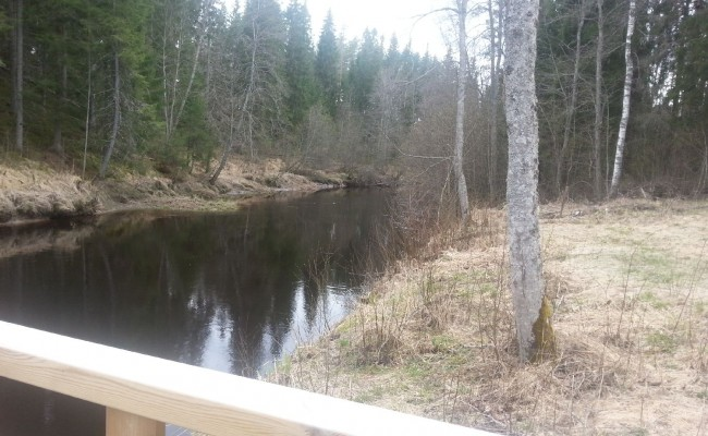 finlandia_10