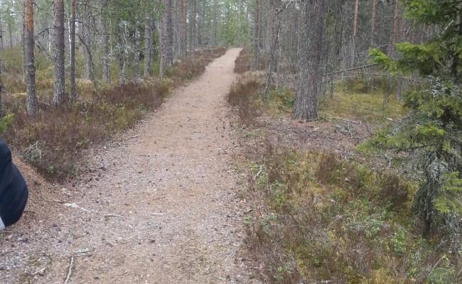 finlandia_15